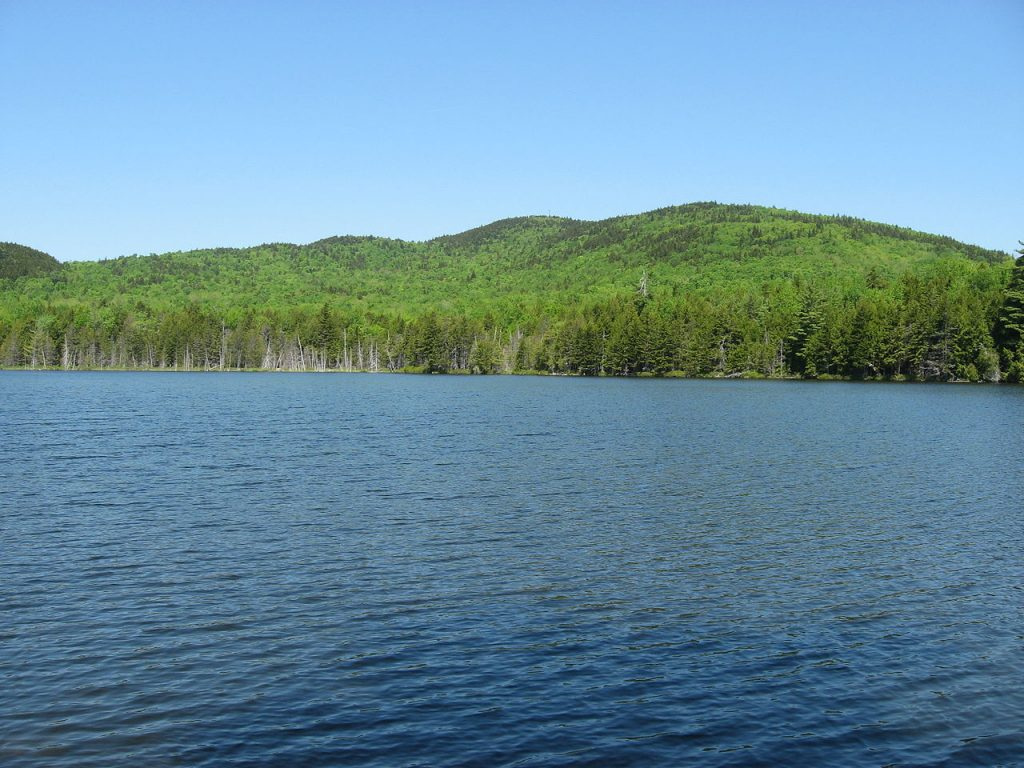 Bear Pond and Lead Mountain in eastern Maine