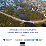 cover of financing natural infrastructure for coastal flood damage reduction